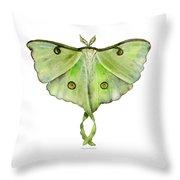 100 Luna Moth Throw Pillow by Amy Kirkpatrick