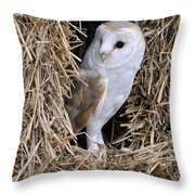 100205p198 Throw Pillow