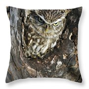 100205p260 Throw Pillow