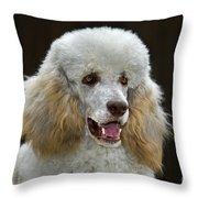 101130p044 Throw Pillow