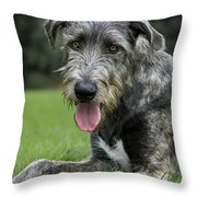 101130p060 Throw Pillow