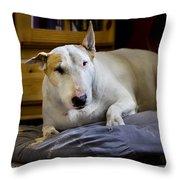 101130p063 Throw Pillow