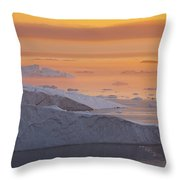 101130p124 Throw Pillow