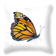 103 Perched Monarch Butterfly Throw Pillow by Amy Kirkpatrick