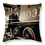 1031 Throw Pillow