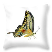 104 Perched Swallowtail Butterfly Throw Pillow by Amy Kirkpatrick