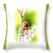 104036-008 Throw Pillow