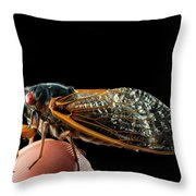 A Detailed View Of A Brood II Cicada Throw Pillow