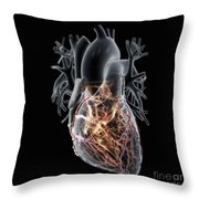 Coronary Blood Supply Throw Pillow
