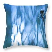 Dandelion Close-up View Backlit Throw Pillow