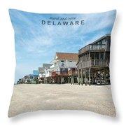 Delaware Throw Pillow