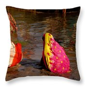 Hampi Ghats Throw Pillow