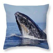 Humpback Whale Breaching Maui Hawaii Throw Pillow