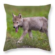 Timber Wolf Pup Throw Pillow
