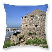 110111p219 Throw Pillow