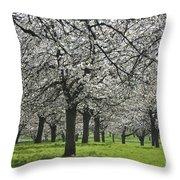 110111p265 Throw Pillow
