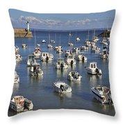 110202p149 Throw Pillow