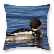 110307p036 Throw Pillow