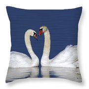 110307p053 Throw Pillow