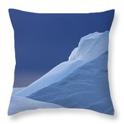 110307p083 Throw Pillow