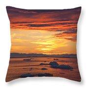 110307p086 Throw Pillow