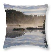 110307p099 Throw Pillow