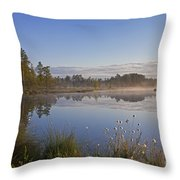 110307p101 Throw Pillow