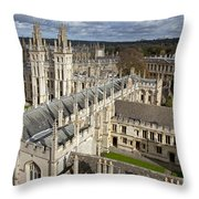 110307p105 Throw Pillow