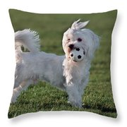 110307p155 Throw Pillow
