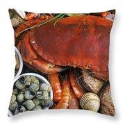 110307p165 Throw Pillow