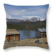 110307p193 Throw Pillow