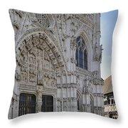 110307p295 Throw Pillow
