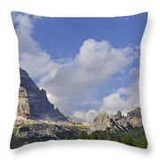 110414p091 Throw Pillow