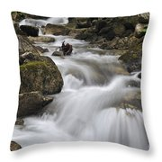 110414p104 Throw Pillow