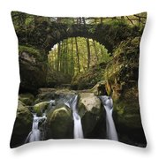 110414p155 Throw Pillow