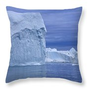 110506p054 Throw Pillow