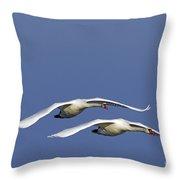 110506p088 Throw Pillow