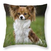 110506p146 Throw Pillow