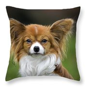 110506p149 Throw Pillow