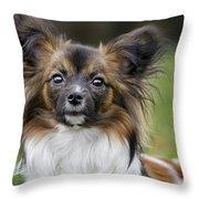 110506p151 Throw Pillow