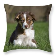 110506p160 Throw Pillow