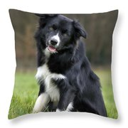 110506p166 Throw Pillow