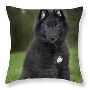110506p179 Throw Pillow