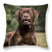 110506p185 Throw Pillow