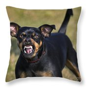 110506p187 Throw Pillow
