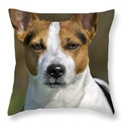 110506p197 Throw Pillow