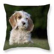 110506p204 Throw Pillow