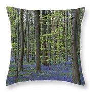 110506p233 Throw Pillow