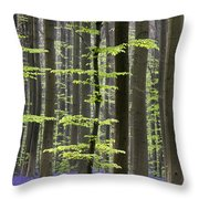 110506p244 Throw Pillow