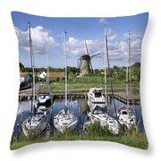 110613p055 Throw Pillow